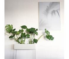 Planters box design.aspx Video