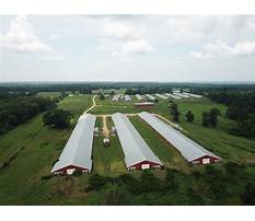Poultry houses for sale alabama Video