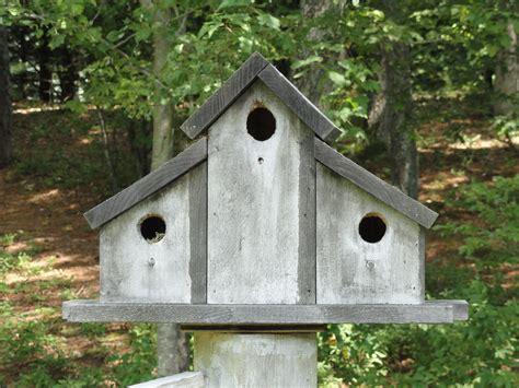Primitive Bird Houses