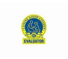 Professional dog training cost.aspx Video