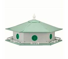 Purple martin bird house for sale Video