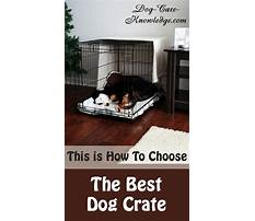 Purpose of crate training your dog Video