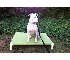 Pvc raised dog bed.aspx Video