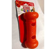 Quest dog training Video