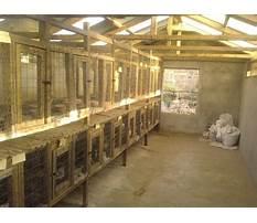 Rabbit building designs Video