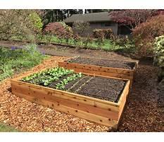 Raised garden beds designs Video