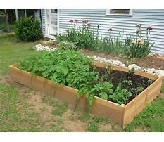 Raised gardening beds.aspx Video