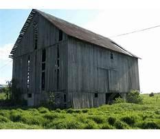 Recycle wood colorado Video