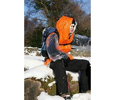 Rescue in training dog vest.aspx Video