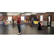 Rio gran dog training.aspx Video