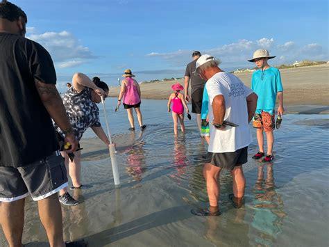 Savannah Beach Ecology