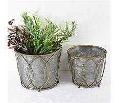 Small galvanized planters Video