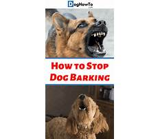 Something to stop dogs barking Video