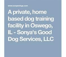 Sonya dog training oswego il.aspx Video
