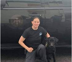 Special forces dog training.aspx Video