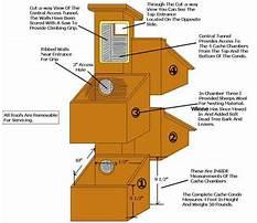 Squirrel house plans.aspx Video