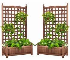 Standing planter.aspx Video