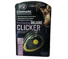 Starmark dog training.aspx Video