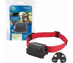 Stubbon dog training shock vibration collar.aspx Video
