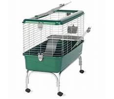 Super pet my habitat defined home for rabbits Video