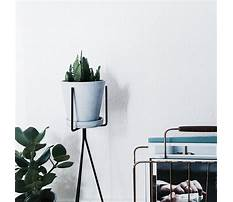 Tall outdoor plant stands.aspx Video