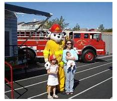Temecula service dog training.aspx Video