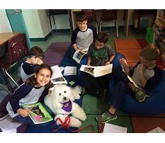 Therapy dog training dfw Video