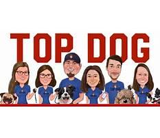 Top dog training videos.aspx Video