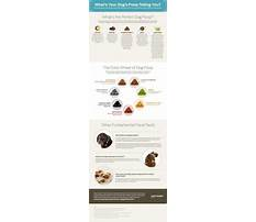 Train your dog where to poop.aspx Video
