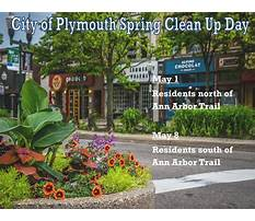 Trust and obey dog training.aspx Video