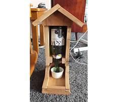 Tui bird feeder plans Video