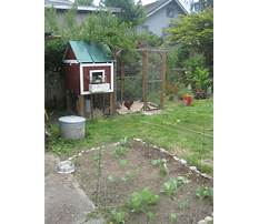 Urban farmer chicken coops Video