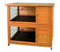 Ware rabbit cages home Video