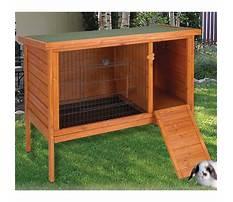 Ware rabbit hutch runs in san diego Video