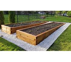 What are raised garden beds Video