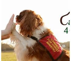 Who makes gravy train dog food.aspx Video