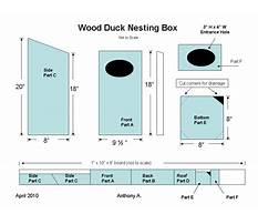 Wood duck box plans free Video