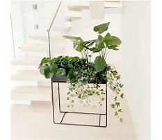 Wood flower box designs.aspx Video