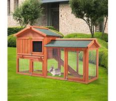 Wooden chicken coop and run Video