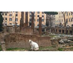 Wooden pinocchio made in italy.aspx Video
