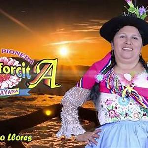 Alcanforcita De Huayana