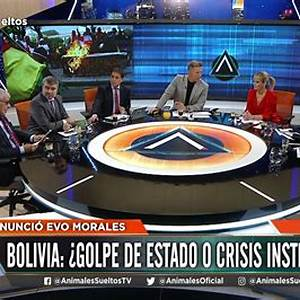 Animales Sueltos & Alejandro Fantino