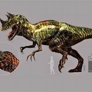 D-Rex & Lateral