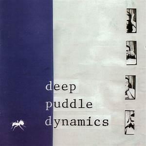 Deep Puddle Dynamics