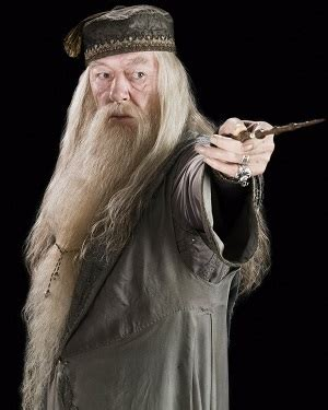 harry potter hogwarts teachers characters tv tropes