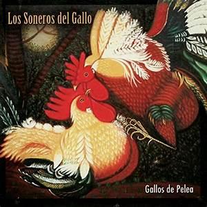 Los Soneros Del Gallo