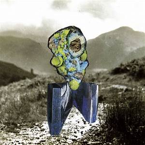 Poor Old Horse