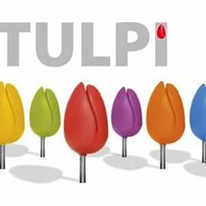 Tulpi